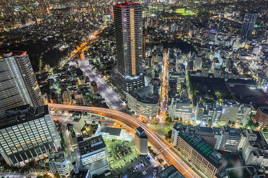 Heartbeat of Tokyo