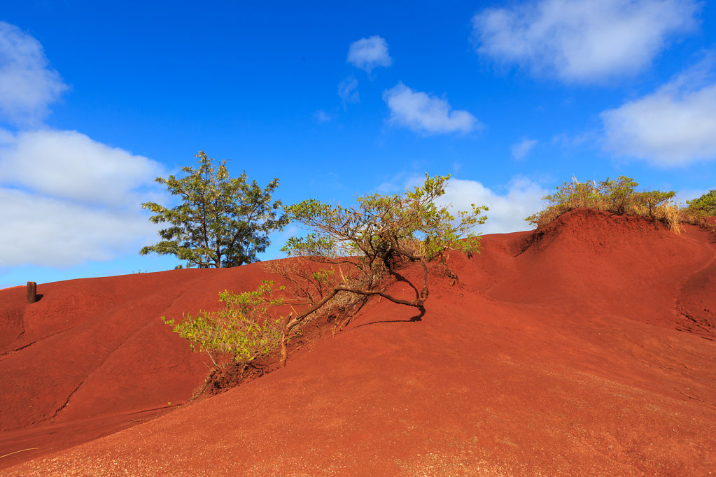 Red Sand Bank